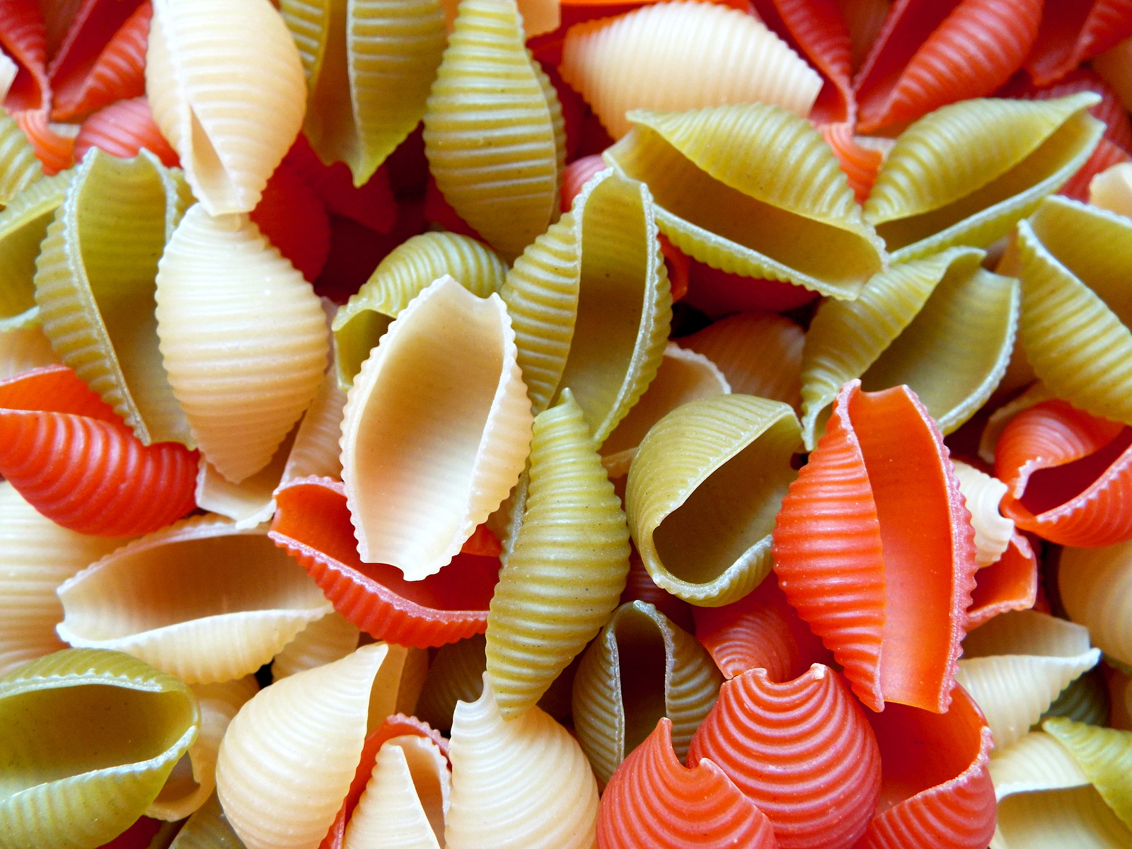 Pasta shells background. Multicolor Conchiglie shell Pasta Texture Pattern Background. Red green and yellow color pasta shells in market for sale. Macaroni shell pasta colorful pattern or background